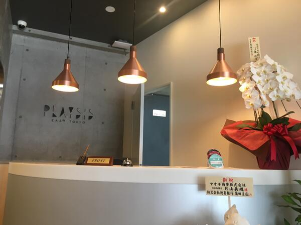 playsis reception